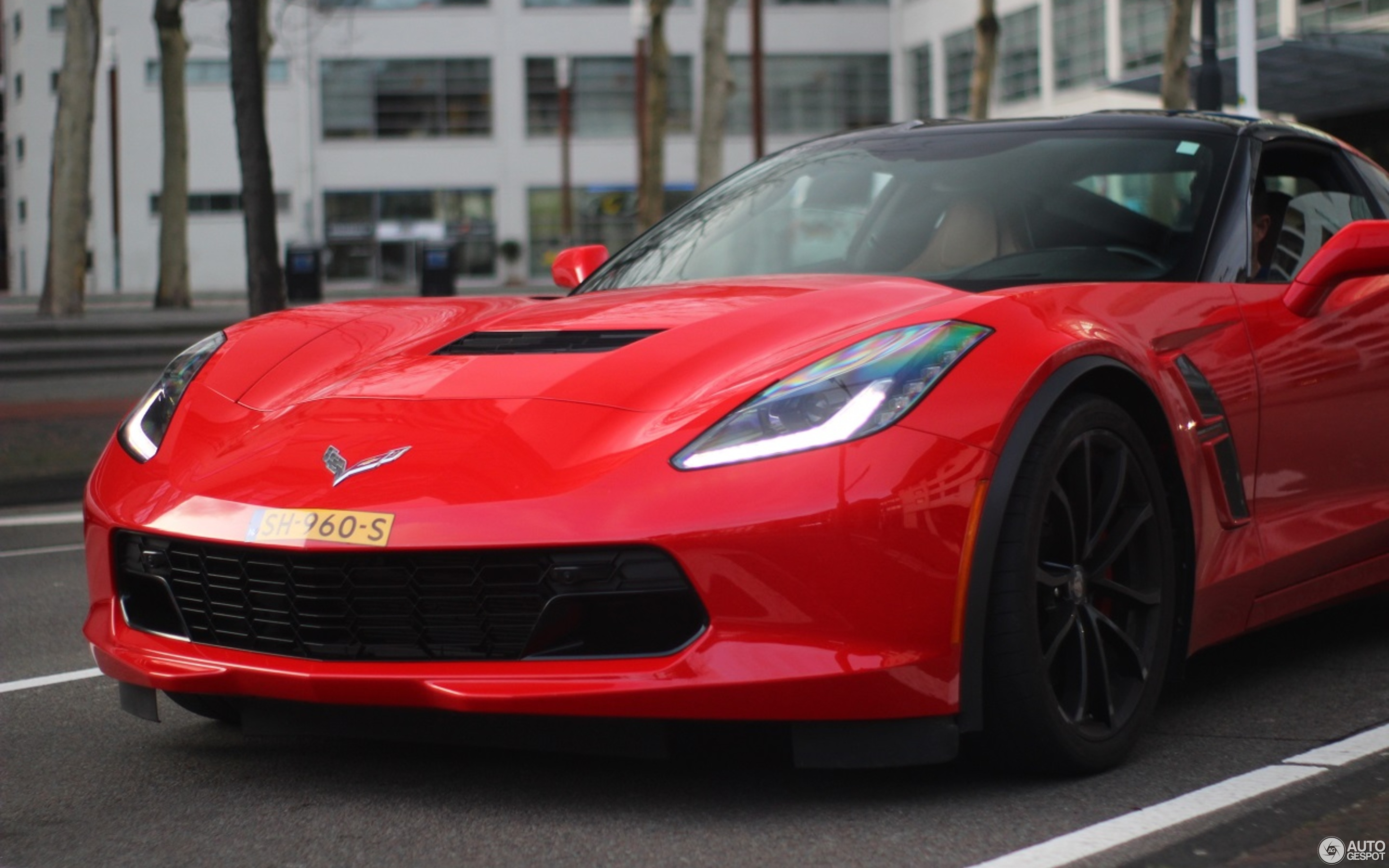 Chevrolet Corvette C7 Grand Sport - 10 February 2019 - Autogespot