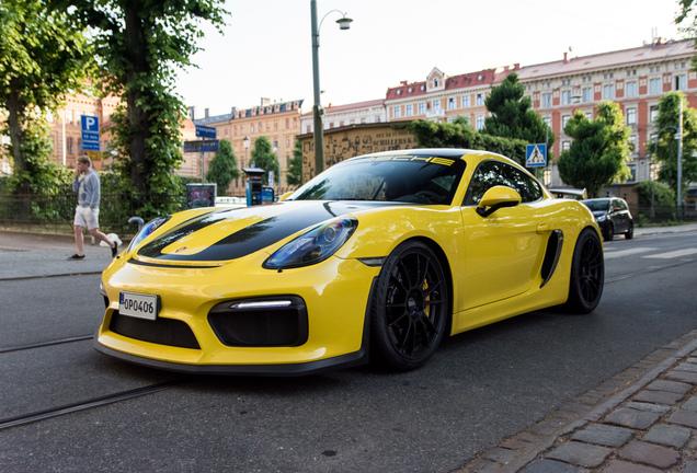 Porsche981 Cayman GT4