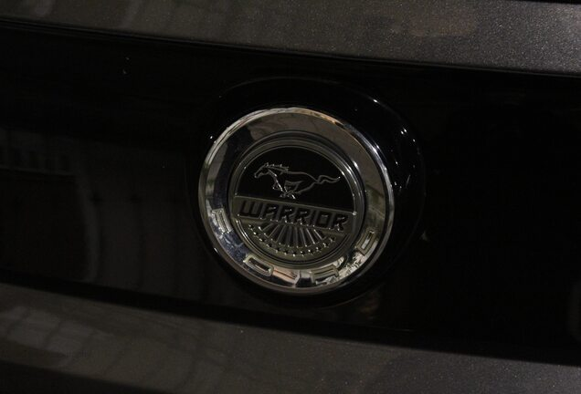 Ford Mustang GT Warrior 2013